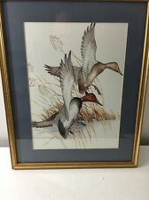 Charles E. Murphy Duck Print / Framed And Matted