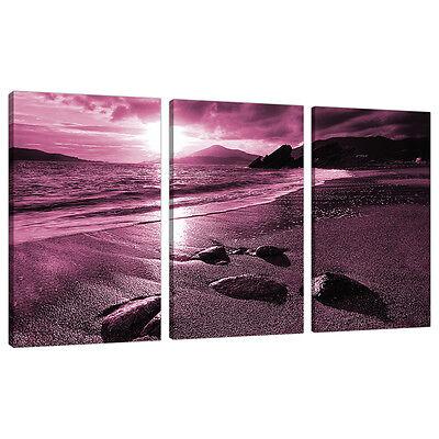 3 Piece Plum Purple Large Canvas Art Pictures Wall Prints Bedroom 3078