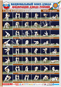 Posters-JUDO-Brown-belt-1-poster-The-technique-of-judo