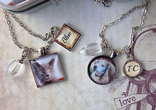 Pet Memory Pendant Necklace and Key Ring Set with Cremation Urn for Pet Ashes