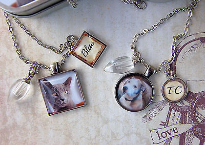 Pet Memory Pendant and Cremation Urn, Loss of Dog Necklace, Loss of Cat Necklace