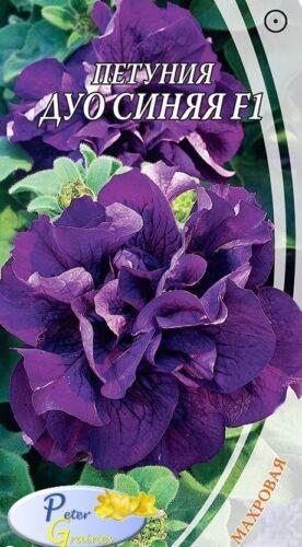 graines de Petunia double Duo bleu F1 10 graines Petunia × hybrida