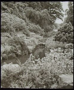 Glass-Magic-Lantern-Slide-VALLEY-GARDENS-HARROGATE-C1930-PHOTO-THIRTIES