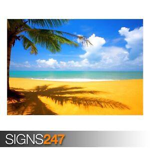 TREE-BEACH-SIDE-3272-Beach-Poster-Picture-Poster-Print-Art-A0-A1-A2-A3-A4