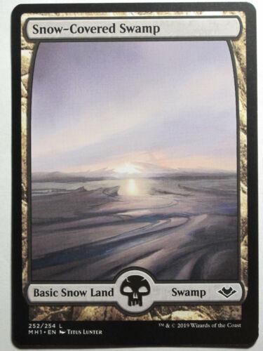 Snow-Covered Swamp     Mtg Magic English