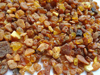 Natural Raw Chip Baltic  Holed Amber Loose Beads  20g