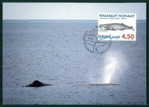 Copieux Le Groenland Mk 1996 Faune Baleine Baleines Choisis-en Whales Baleine Maximum Carte Mc Cm En75-afficher Le Titre D'origine