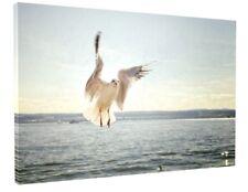STUNNING BEACH SEA SEAGULL BIRDS ANIMAL CANVAS PICTURE PRINT #3206