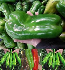 100Pcs Big Hybrid Pepper Seed Vegetable Plant Courtyard Pimento Home Garden BT88