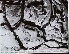 Rain Prints & Mud Cracks in Clay,Versailles, Missouri, Magic Lantern Glass Slide