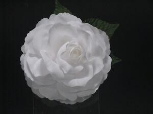 Flamenco-Flowers-Big