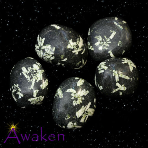 *ONE* CHINESE WRITING ROCK Natural Tumbled Stone Approx 15-20mm *TRUSTED SELLER*