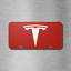 Tesla License Plate Vehicle Auto Vehicle Tag Model S X 3 Red Electric Car New!