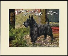 SCOTTISH TERRIER LOVELY DOG FOOD ADVERT PRINT MOUNTED READY TO FRAME