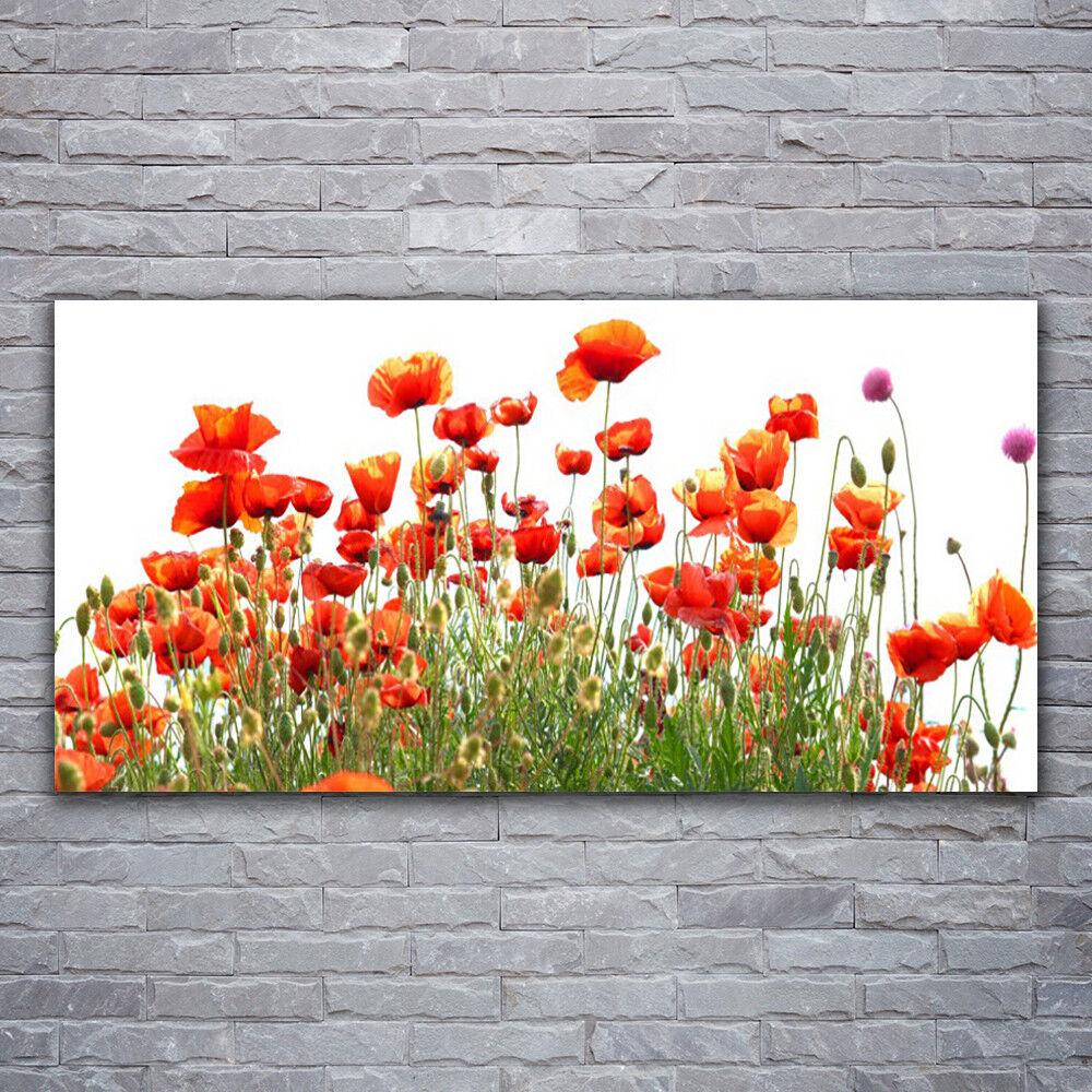 Acrylglasbilder Wandbilder aus Plexiglas® 120x60 MohnBlaumen Natur