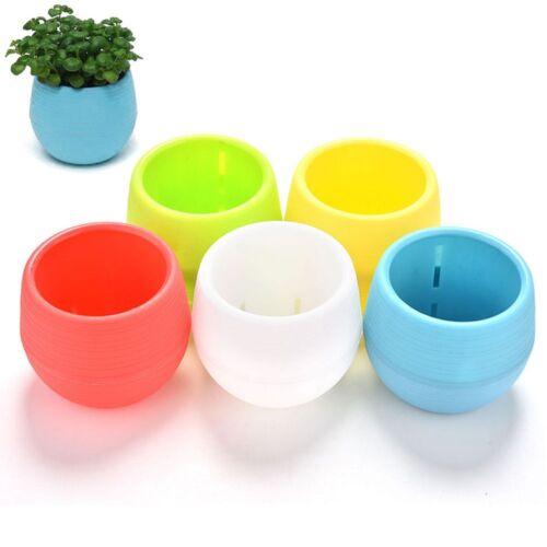 Succulent Plant Flowerpot Nursery Pot Garden Supplies Home Office Decoration Hot