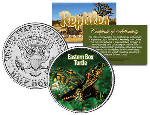 EASTERN-BOX-TURTLE-Collectible-Reptiles-JFK-Half-Dollar-US-Colorized-Coin-NC