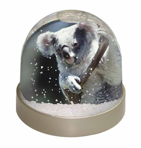 AKB-1GL Cute Koala Bear Photo Snow Globe Waterball Stocking Filler Gift