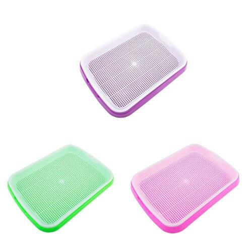 Seed Sprouter Tray Soil-Free Big Capacity Germination Grow Box Grass Plant M7F2