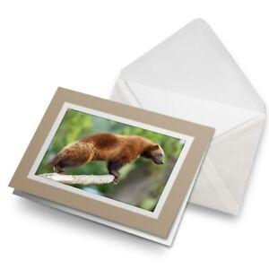 Greetings-Card-Biege-Brown-Wolverine-Animal-16842