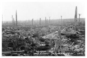 WWI WW1 No Mans Land Barren Flanders Fields First World War Silver Halide Photo