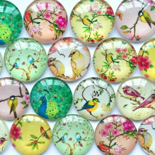 Round Photos Glass Cabochon Cameo Base Setting Jewelry Components 10pcs//Lot