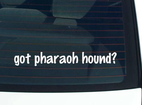 DOG BREED FUNNY CAR DECAL BUMPER STICKER WALL got pharaoh hound