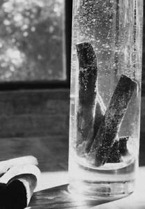 Agressif 6 Ea Authentique Activé Japonais Kishu Binchotan Charcoal Medium Sticks-afficher Le Titre D'origine