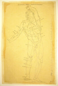 Drawing-Pencil-Study-of-Gallic-Se-Giving-the-Death-Collection-D-Palace-Altemps