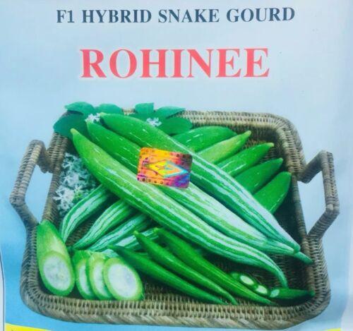 Chichinga Bangladeshi Seeds F1 HYBRID Snake Gourd কহি Chichinda Kohi Padval