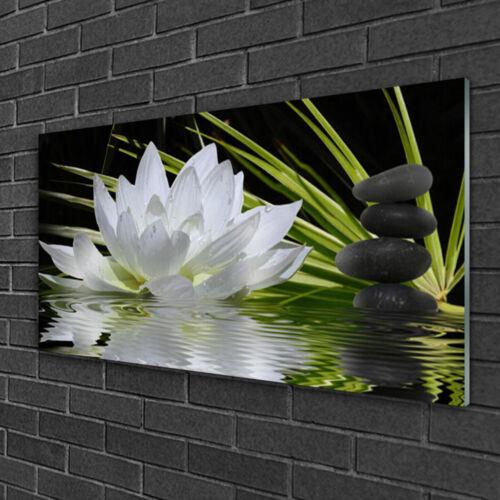 Tulup Wandbilder Glasbild Dekobild 100x50 Blume Steine Wasser Pflanzen