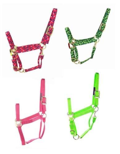 800~1100lb Full Horse 2ply w//snap H.duty Nylon Halter Solid// Dotted 1 //Multiples