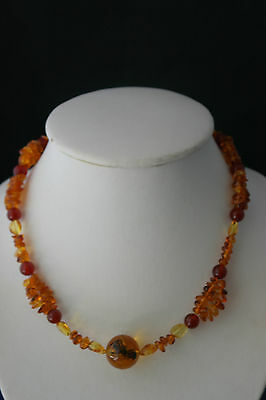 "Beautiful Baltic Amber Necklace 16"" inches Long In Gift Box"