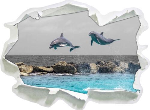 zwei hoch springende Delphine 3D-Look Papier Wandtattoo Aufkleber-Sticker