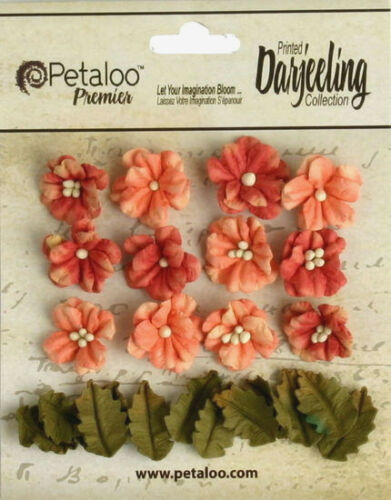 Petites SPICE Mix 12 Flowers 2cm+12 Leaves 15x20mm Paper Darjeeling PetalooBox H