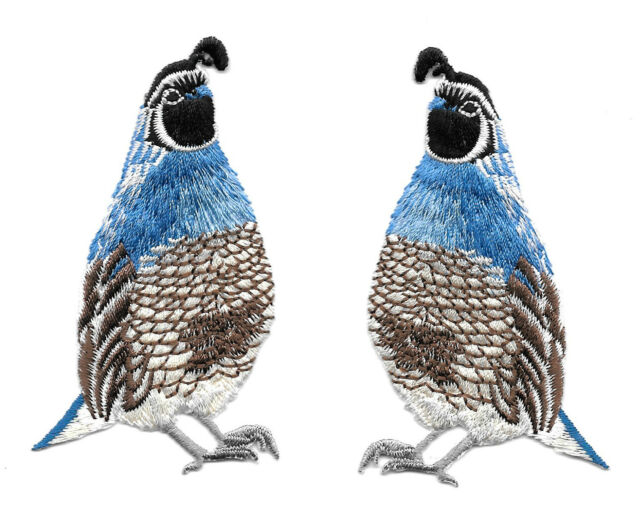 Quail - Southwest Bird - Fully Embroidered Iron On Applique Patches - Set Of 2