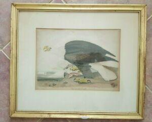 Alexander-Lawson-Colored-Engraving-WHITE-HEADED-EAGLE-1828-Framed