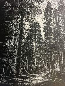 Original-Wood-Engraving-Between-Two-Pines-hiking-trail-in-mountain-pine-forest