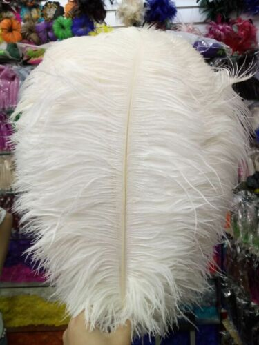Hot Sell 10-200pcs White High Quality Natural Ostrich Feathers 6-28inch//15-70cm