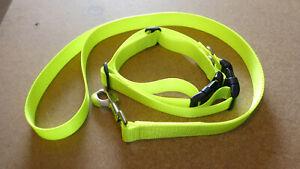 Lead and 2 x Dog Collars, Hi Vis Yellow