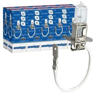 10x-H3-XENOHYPE-Premium-Halogen-Auto-Lampe-Birne-12V-55-Watt-PK22s