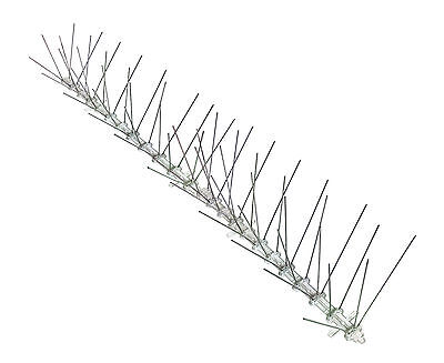 pigeon control X-wide ledges BirdBusters Stainless Steel Bird Spikes covers 24/'