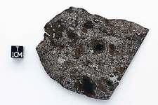 Mesosiderite Meteorite Sahara 98088  23.1g (full slice)