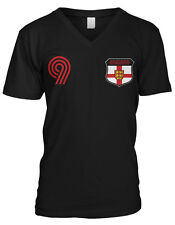 Ireland Coat of Arms Lions Irish Pride Rugby Soccer Football Juniors Tshirt