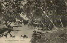 French Guinea - Guinee Francaise Sous Bois - Africa c1900 Postcard