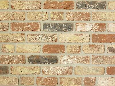 Schlussverkauf Retro-handform-verblender Wdf Bh804 Rot-bunt-beige Klinker Vormauersteine Klinker Fassade