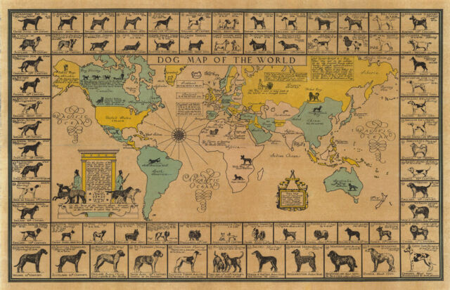 World Map 1933.1933 Pictorial Dog Map Of The World American Kennel Club Poster
