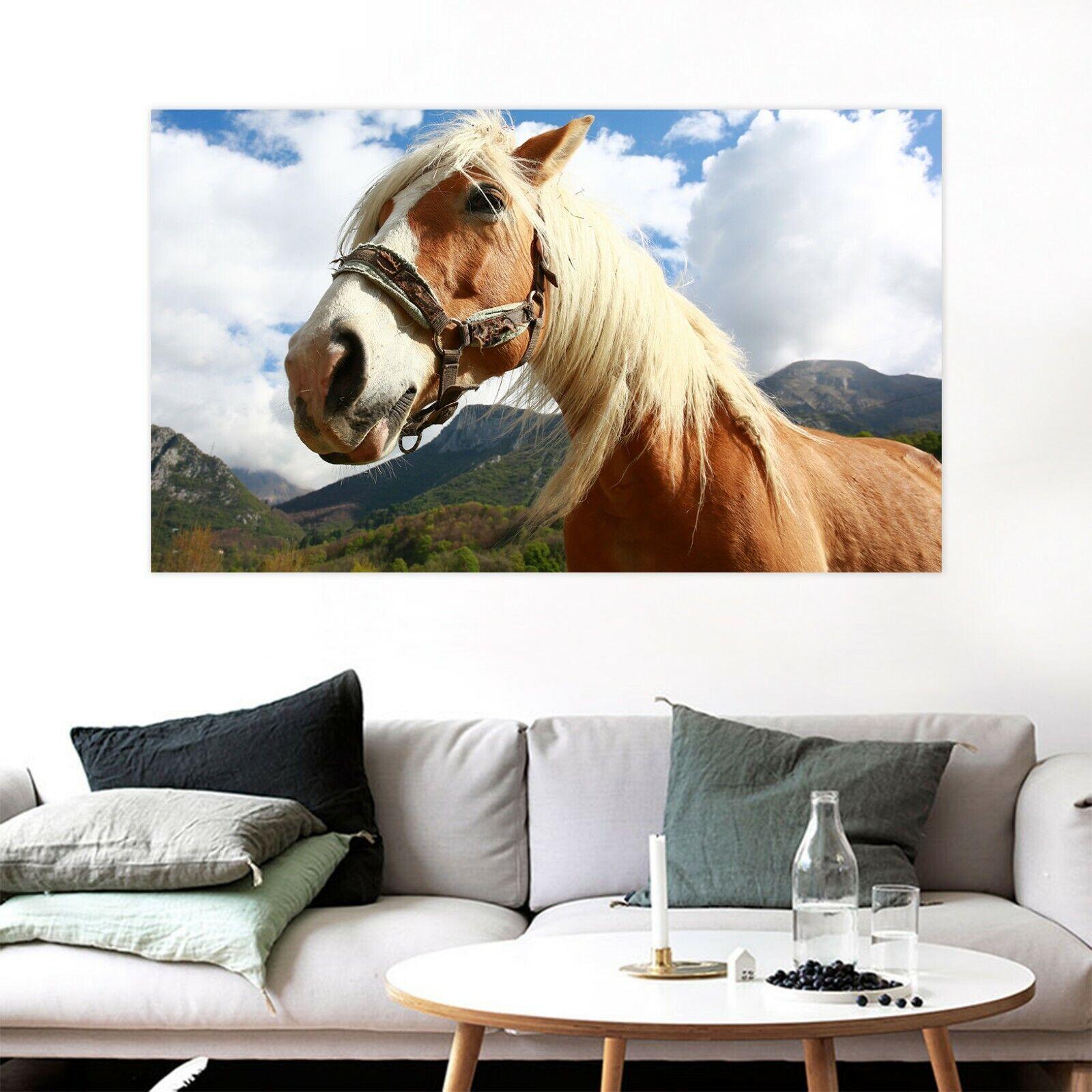 3D Himmel Pferd M49 Tier Wandaufkleber Wandtattoo Tapeten Wandbild Angelia