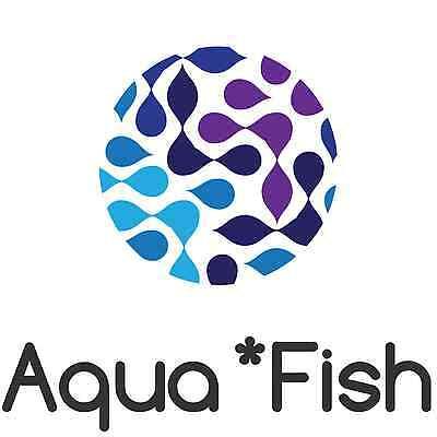 aqua*f1sh