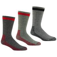 Wigwam Socks Outdoor Canada F2064 Heavyweight Wool 2 Pair Hunt Work Field